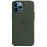Накладка Silicone Case Magsafe для iPhone 12/12Pro (Cyprus Green)