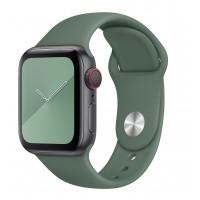 Силиконовый ремешок COTEetCI для Apple Watch 38/40mm (Pine Green)