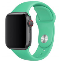 Силиконовый ремешок для Apple Watch 38/40mm (Spearmint)